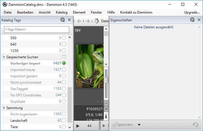 Fotos und viele andere Medienformate verwalten mit Daminion 4.5