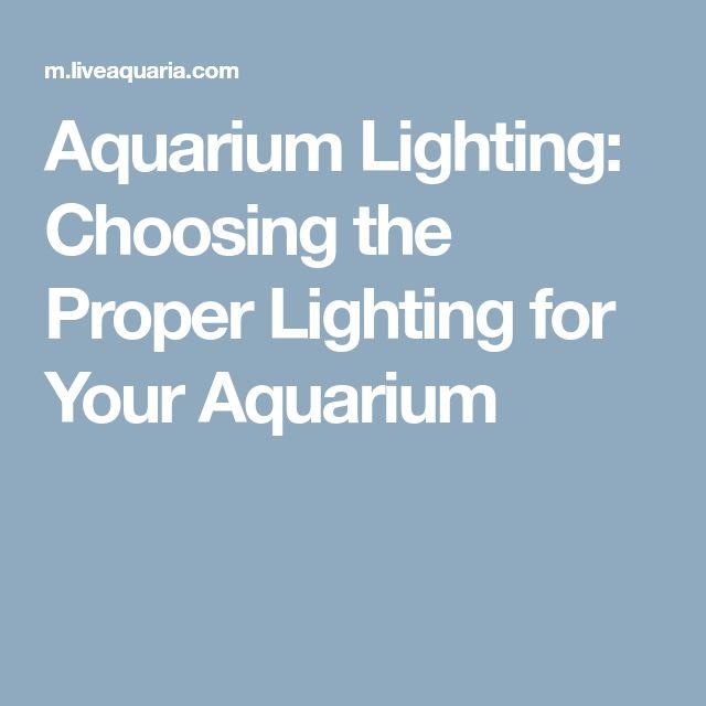 Aquarium Lighting: Choosing the Proper Lighting for Your Aquarium