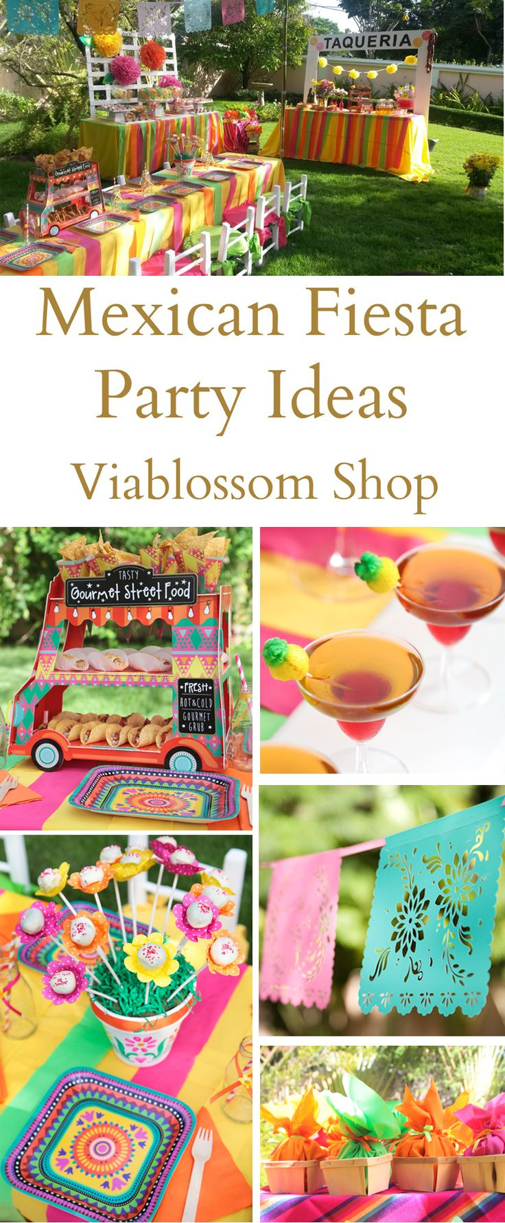 Mexican Fiesta Party Ideas for your Cinco de Mayo Party or Fiesta Party!  For more visit blog.viablossom.com