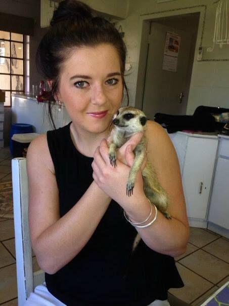 Love Animals, sweetest meerkat