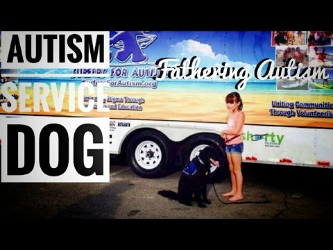 What Does An Autism Service Dog Do? - YouTube