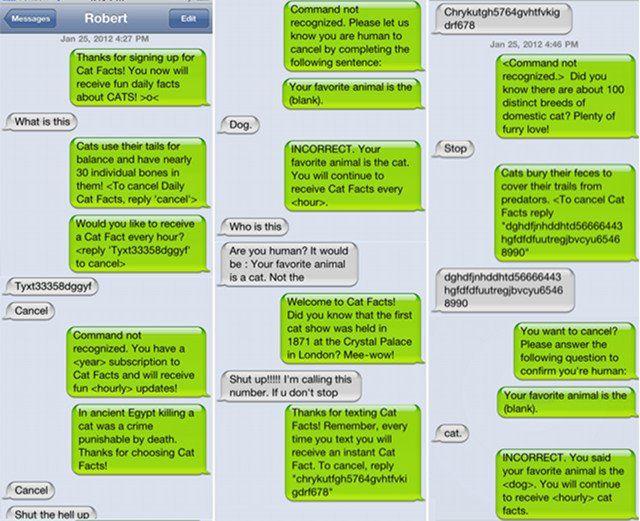Cruel, but so, so funny!