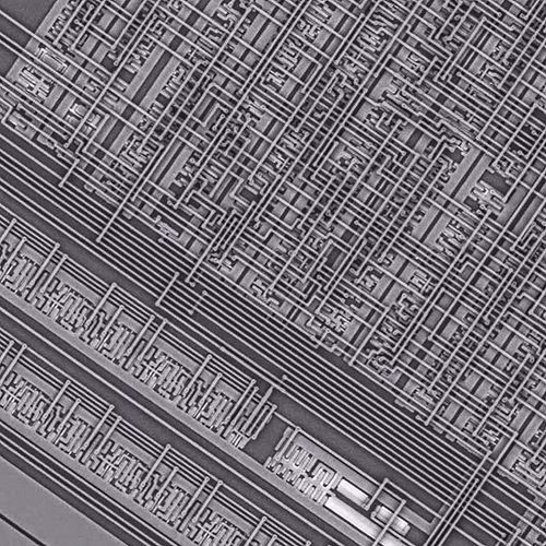 A microchip placed under an electron microscope. Revealing a complex system of interconnected transistors and microscopic wires.  #microchip #transistor #esm #electronmicroscope #network #networks #digital #digitalage #complex #monochrome #blackandwhite #structure #computers #computing #circuit #circuits #information #informationage #underthemicroscope #chip