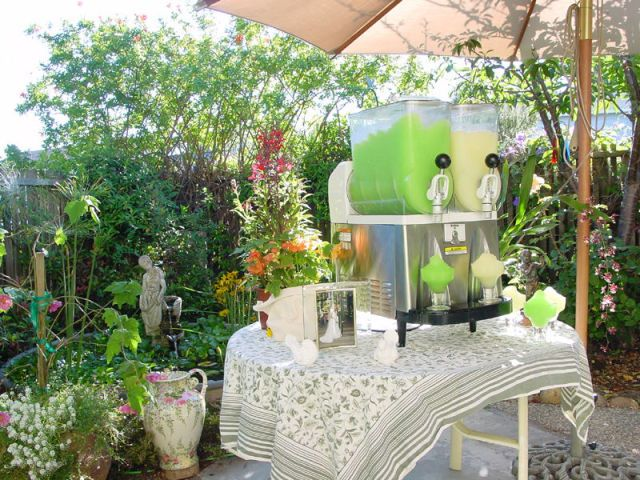 Everything You Need to Know About Renting a Frozen Margarita Machine   - Delish.com