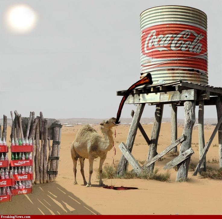 coke soda-pop essay
