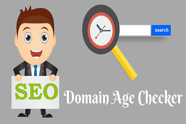 Domain age checker tool gives age of the domain by checking on whois data server, the tool is 100% free to use and can help to buy aged domains easily.
