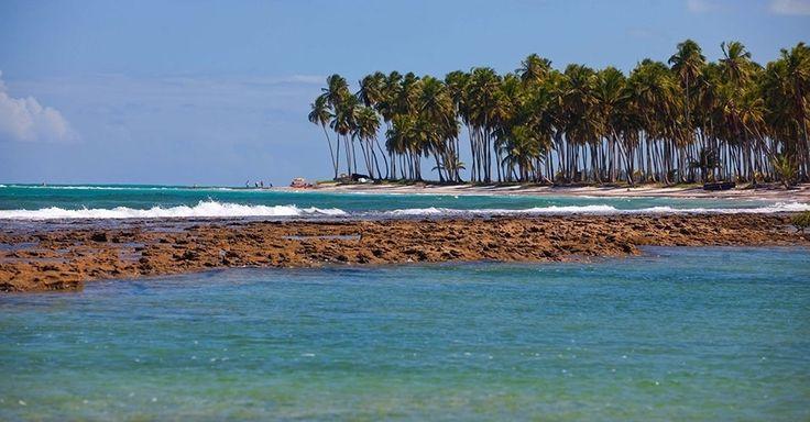 Praia dos Carneiros (PE): Bem no ponto onde o rio se encontra com o mar, um muro de recifes de coral cria uma represa natural, formando uma grande piscina de águas claras, calmas, rasas, transparentes e quentes. De um lado do leito do rio está a praia. Do outro, falésias brancas formadas por dunas. Por todos os lados, coqueirais. Toda essa feliz combinação da natureza faz da Praia dos Carneiros, em Tamandaré, a 113 km do Recife, uma das mais paradisíacas do litoral pernambucano. Não à toa, é…