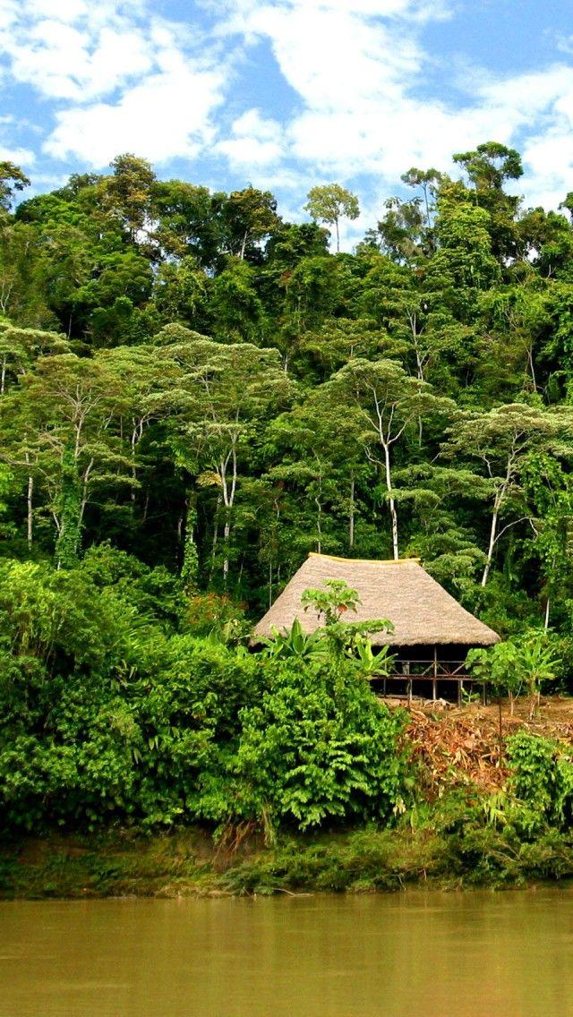 Ecuador, la selva.