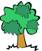 IPOTÂME ....TÂME: Découverte du monde CP : Les arbres