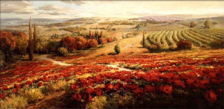 Roberto Lombardi - Red Poppy Panorama