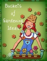 """Buckets of Gardening Ideas"" blog -- has an incredible list of other ""great gardening blogs"" here."