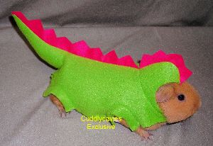 Gizmo needs this costume. She would be the cutest guinea pig dinosaur ever!