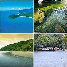 The Daintree Rainforest, been a place I have always wanted to visit since I was a kid.