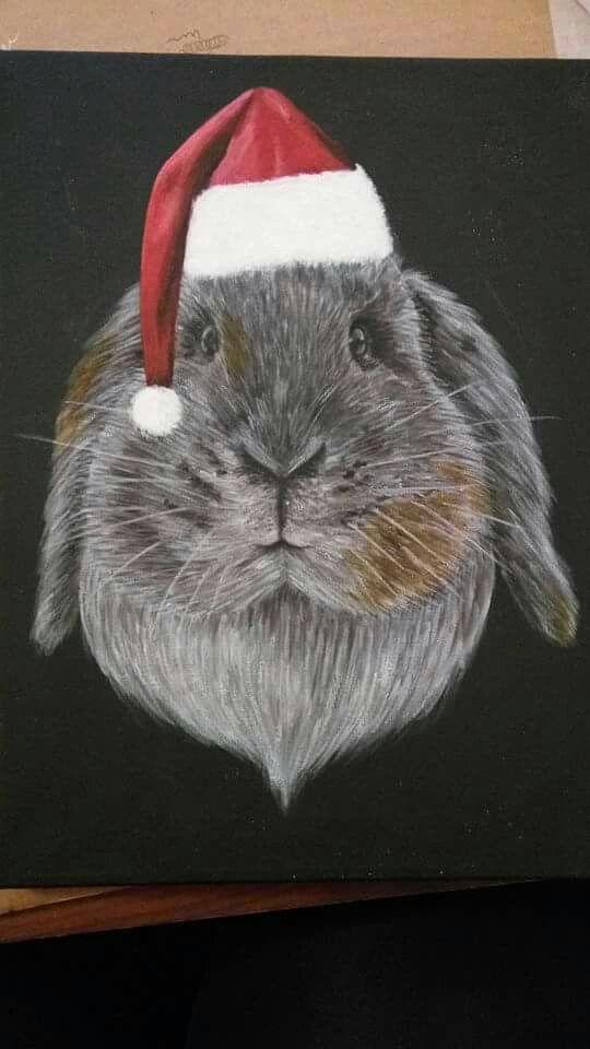 Christmassy bunny.