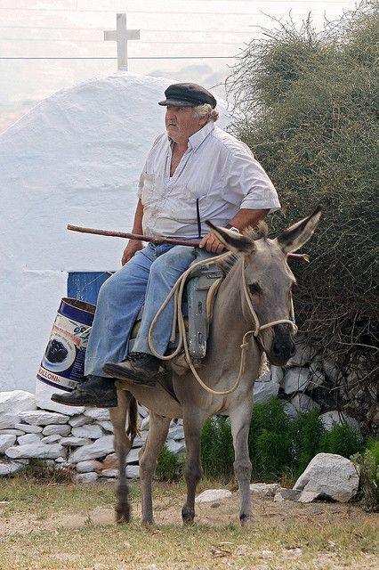Dicke Esel Indianer