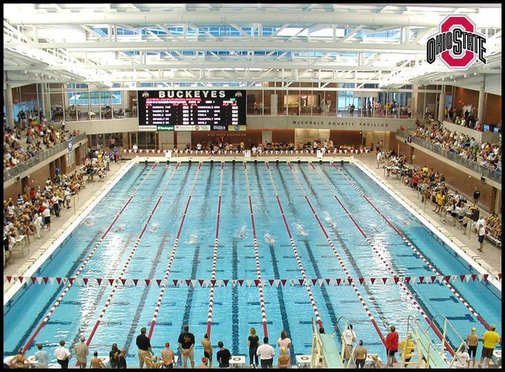 17 best images about ohio state stuff on pinterest ohio - University of michigan swimming pool ...