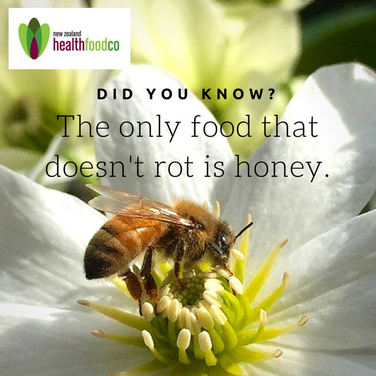 We have a complete range of NZ clover, manuka, and multifloral honey available in store and online. Not sure which one you want? Come in store and try our free tasters today! #honey #manuka #clover #bee #flower #pollen #newzealand #health