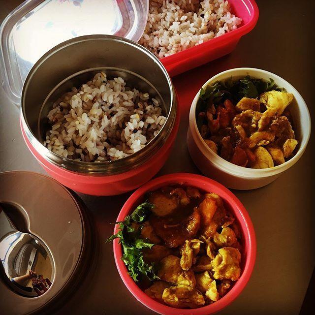 父と私のお弁当。 ・ 料理作るのは2日振りでしょうか…。 ぎっくり腰で伏せっていました。 何年か前にも、1週間で2度ぎっくり腰になる被害に遭ったことがあります。 当時まだ10代、今もまだ22歳なんですが…😂 ・ #お昼ごはん#ランチ#お弁当#カレー#チキン#肉#トマト#雑穀米#オリーブオイル#インド#無添加#料理#cooking#lunch#bento#curry#chicken#meat#rice#tomato#homemade#handmade#india#healthyfood#health#oliveoil