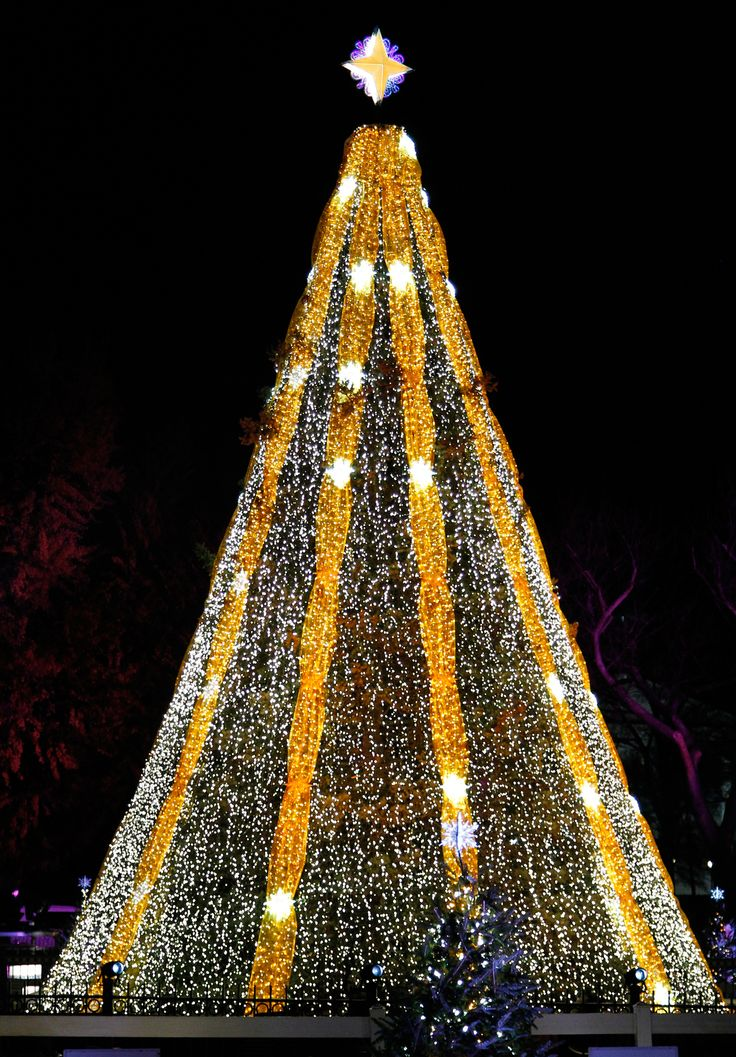 20 of the most magnificent christmas trees around the world - Unique Christmas Tree Lights