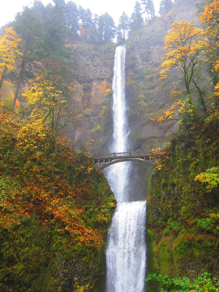 This incredible hike to the top of Multnomah Falls and along Multnomah Creek provides unforgettable perspectives of the Columbia River Gorge just a short drive from downtown Portland.