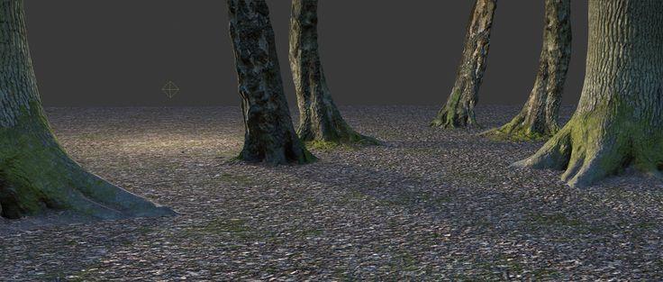 bottom of trees