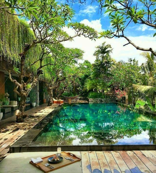 Végétation luxuriante et piscine miroir