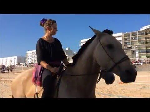 Caval'Océane 2015   Lucie Vauthier Spectacle Equestre  Facebook - YouTube