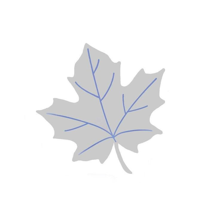 WindowAlert UV Leaf Decal (4-Pack) Stop birds from hitting your windows.