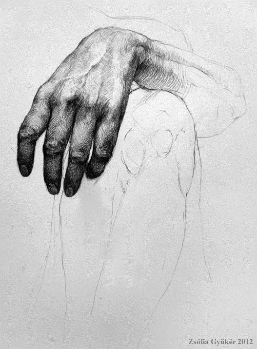 Awesome pencil hand study! #pencil #hand #study