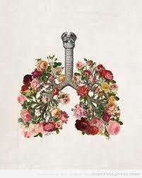 És impressionant la multitut de muscles, ossos i estructures que es mouen i es posen en marxa amb cada respiració que fem. El cos humà és una maravella perfectement dissenyada i coordinada.   ... Senta't en silenci, respira lent, llarg i profund i simplement concentra't i sent com l'aire entra i recorre fins l'últim racó del teu cos ...   https://www.facebook.com/video.php?v=858851980799225&set=vb.188234931194270&type=2&theater