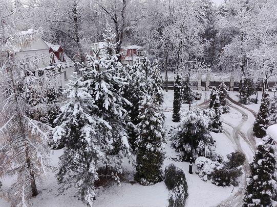 Snowy winter 1