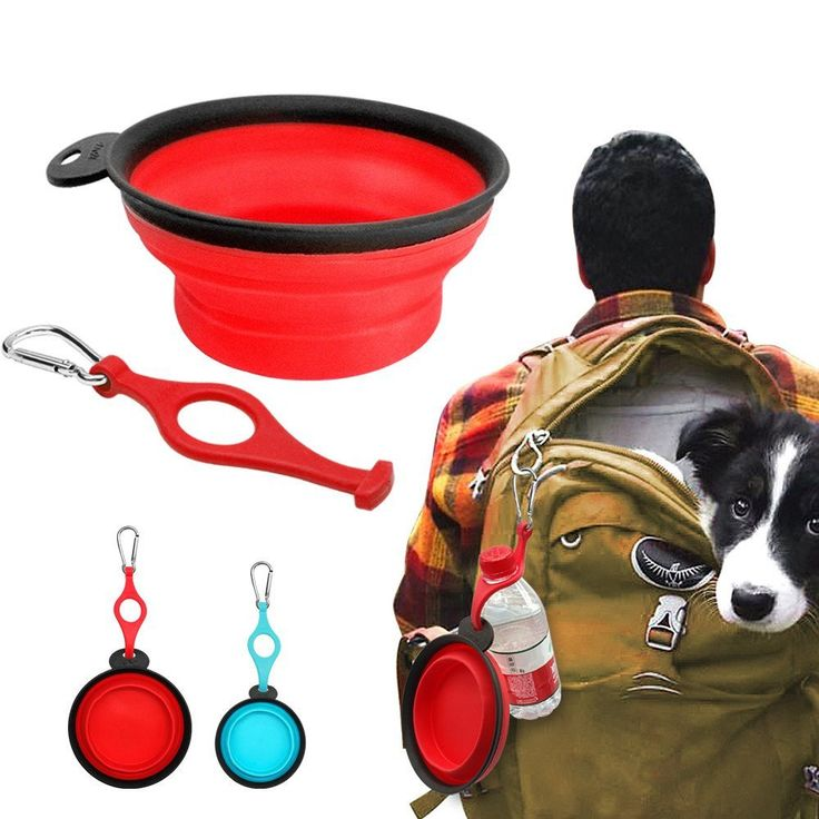 Collapsible Dog Bowl with Carabiner and Water Bottle Holder