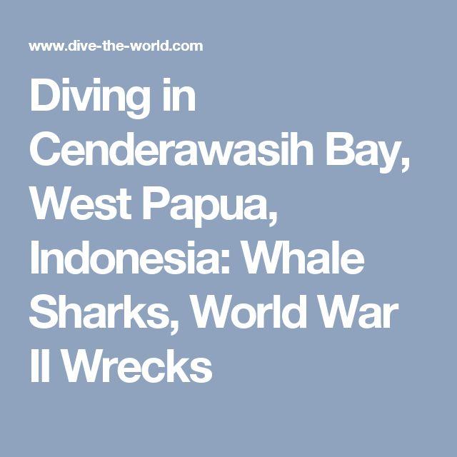 Diving in Cenderawasih Bay, West Papua, Indonesia: Whale Sharks, World War II Wrecks