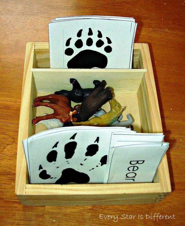 Montessori Nature: Free Animal Printables (KLP Linky Party)