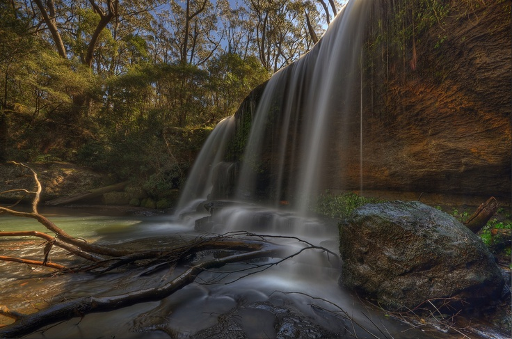 Deep within the Budderoo National Park in the Southern Highlands of NSW Australia