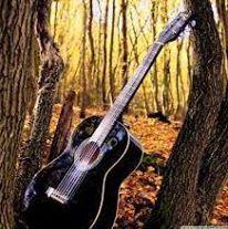 beloved guitar