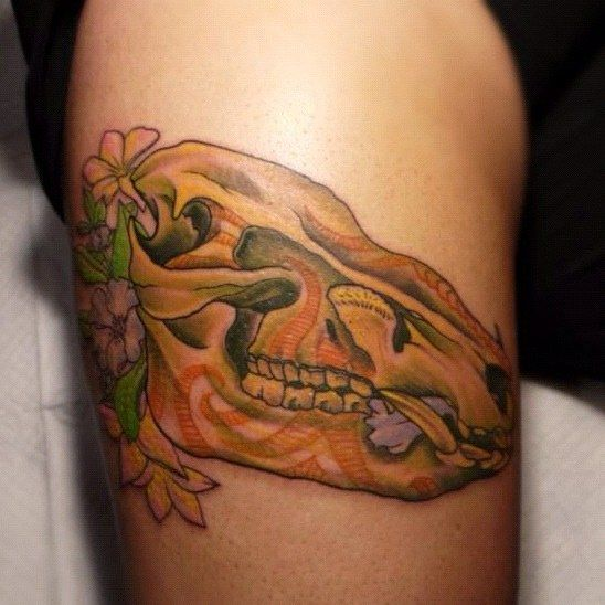 17 best images about skulls on pinterest dire wolf for Color skull tattoos