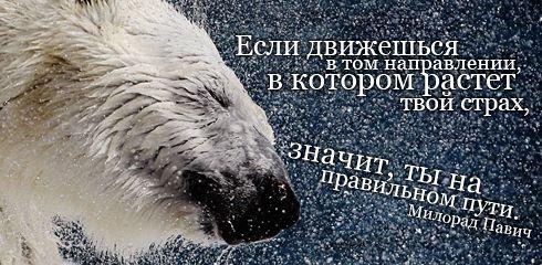 """""""Если движешься в том направлении, в котором растет твой страх, значит, ты на правильном пути""""  Милорад Павич"""
