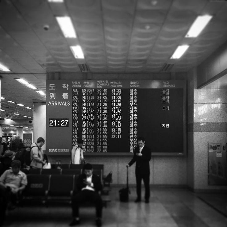 몸도 무거운 주제에  동해번쩍 서해번쩍!!! #김포공항국내선
