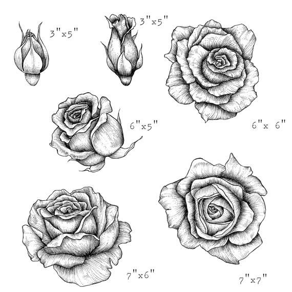 Hand Drawn Rose Clipart Black And White Floral Clipart Etsy In 2021 Roses Drawing How To Draw Hands Rose Clipart