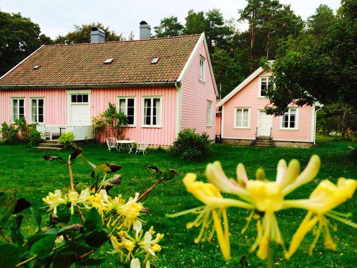 Rosa huset i skogen