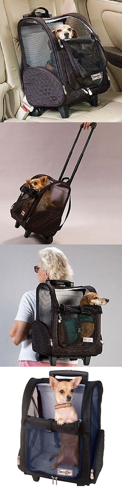 Carriers and Totes 177788: Airline Pet Carrier Under Seat Small Dog Cat Travel Bag Approved Backpack Car -> BUY IT NOW ONLY: $139.99 on eBay!