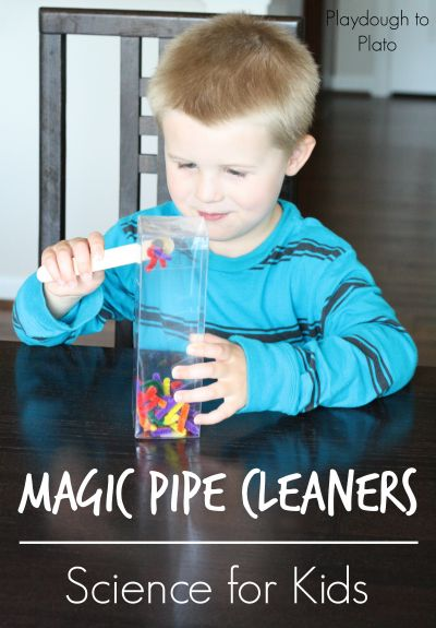 Magic Pipe Cleaners! Simple set up science experiment for kids.