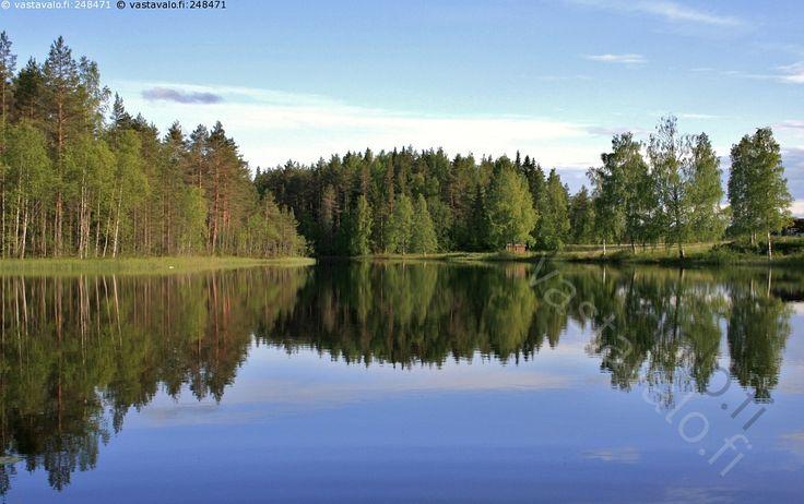 Heijastuksia - maisema maisemat kesämaisema järvimaisema järvi kesä lampi vesi heijastus heijastua peilautua ranta puu puut sinitaivas sininen taivas metsä suomi suomalainen sauna tyyni lämmin vesistö kesäkuu koivu mänty  heijastukset veden pinta vedenpinta puita