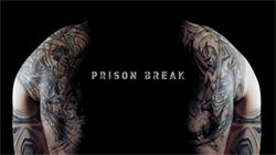 Notably a strange addition, but this post references the Prison Break plot where a man is convicted of a crime he didn't commit and his brother intends to help him escape prison by following a camouflaged map that he had tattooed onto his body.