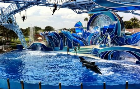10 tips to sea world....I love Sea World and have been there many times...but love it more with each visit!