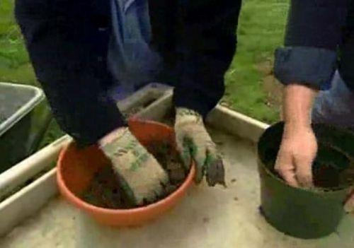 Step by Step ... Hypertufa Planters