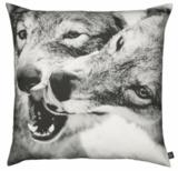 Fotoprint-pute, ulver