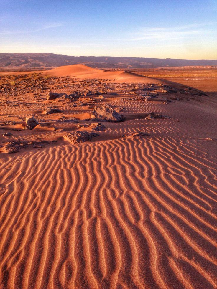 Сафари в Марокко, где то за пустыней Шигага.