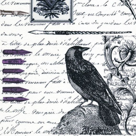 Hey, I found this really awesome Etsy listing at http://www.etsy.com/listing/120784851/nevermore-edgar-michael-miller-fabrics